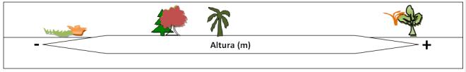 Figura4.png